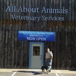 All About Animals Veterinary Services - Pet Services - 95 Kelly St