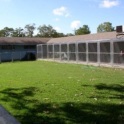 Holiday Kennels - Pet Sitting - 24643 Penny Ln, Porter, TX