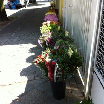 blumen hinterstoisser 11 fotos blumenladen florist lichtenrader damm 22 tempelhof. Black Bedroom Furniture Sets. Home Design Ideas