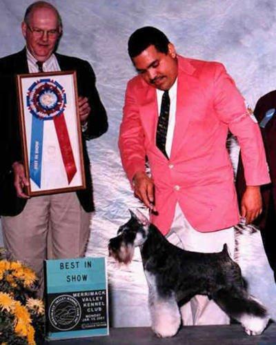 Bark Avenue Pet Salon: 30 Crystal Ave, Derry, NH