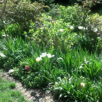 Good Photo Of 6BC Botanical Garden   New York, NY, United States