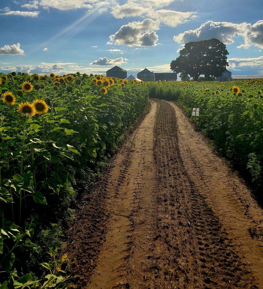 Bergsbaken Farms: W2095 County Rd E, Cecil, WI