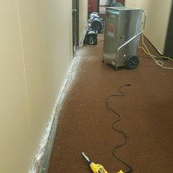 Carpet Cleaning In Anderson Make Money From Home Sd Wealthy