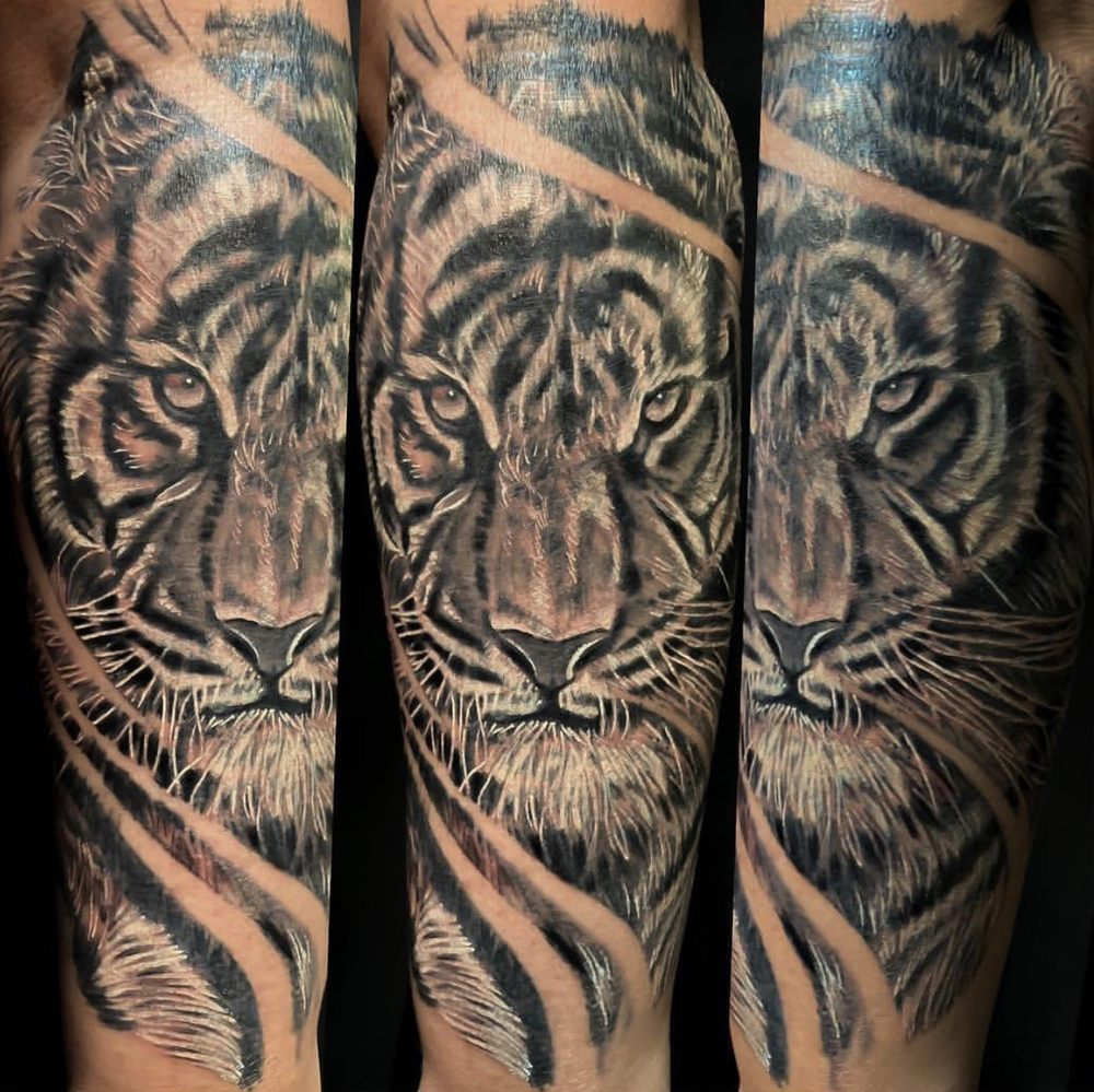 f9b5876cd Photos for Lollis Studios Tattoo Company - Yelp