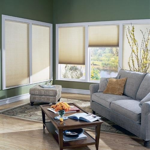Surprise Blinds & Shutters - Window Pros AZ