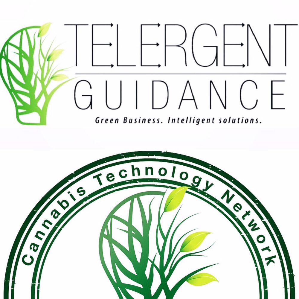 Telergent Guidance