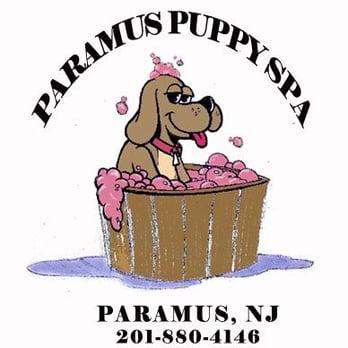 Paramus Puppy Spa Paramus Nj