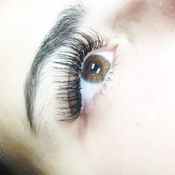 68040204044 Top 10 Best Eyelash Extensions in Syracuse, NY - Last Updated July ...