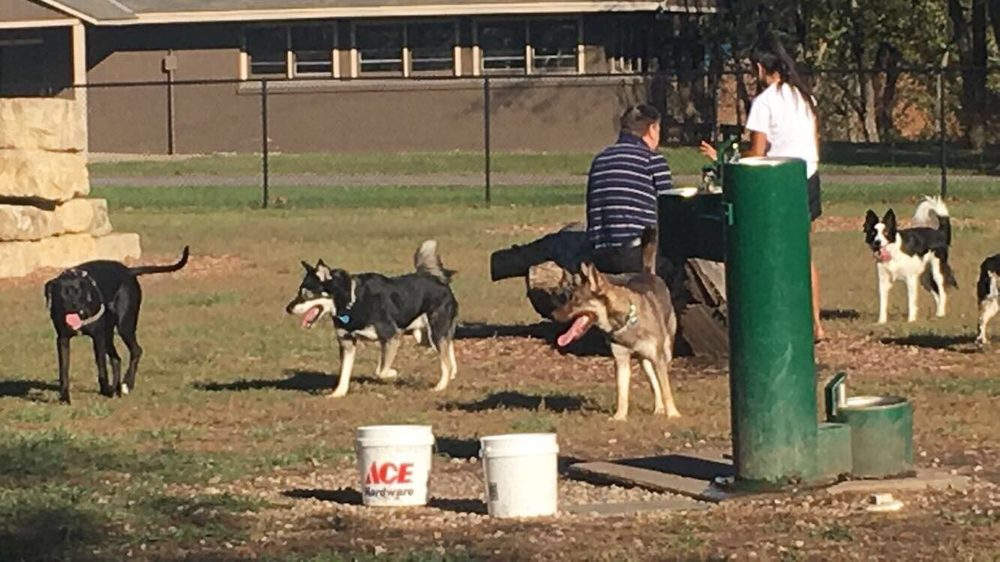 Dog Park in Andover Central Park: 1607 E Central Ave, Andover, KS