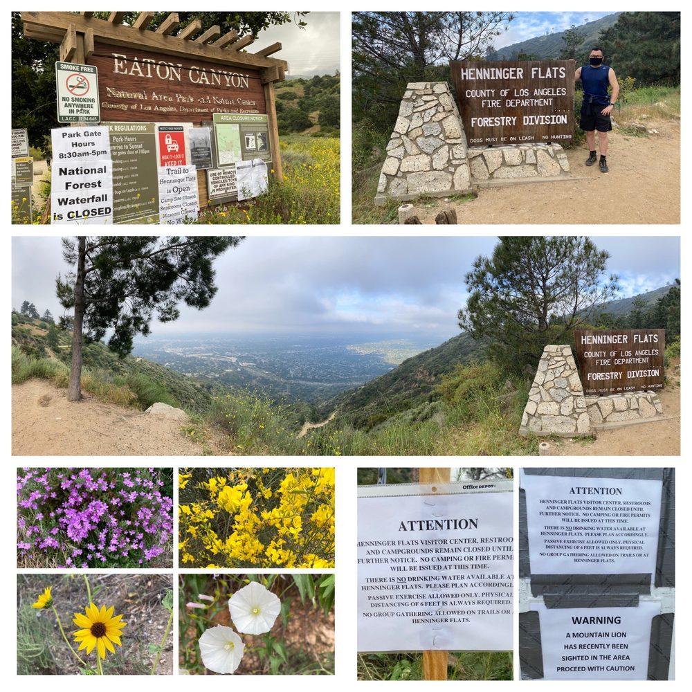 Henninger Flats Campground: 2260 Pinecrest Dr, Altadena, CA