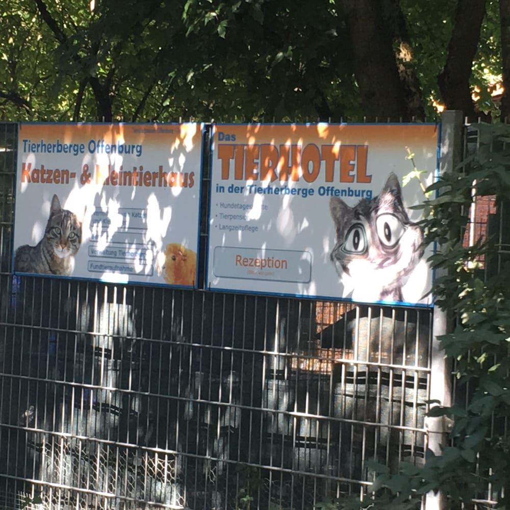 Tierherberge offenburg adozioni di animali am for Offenburg germania