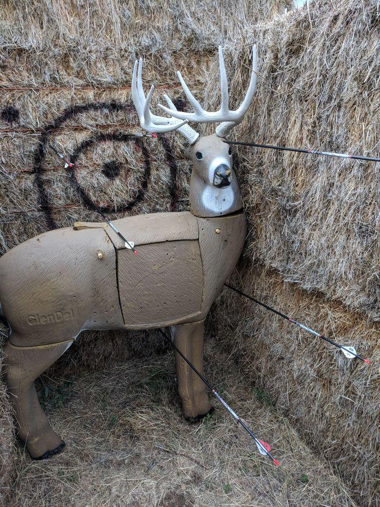 Vee Bar Guest Ranch: 38 Vee Bar Ranch Rd, Laramie, WY