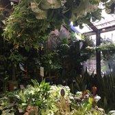 Photo Of Sunset Nursery Los Angeles Ca United States