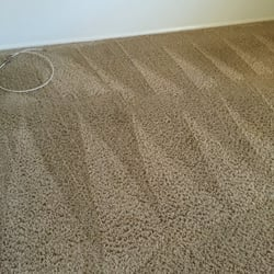 photo of organic dry carpet cleaning phoenix az united states
