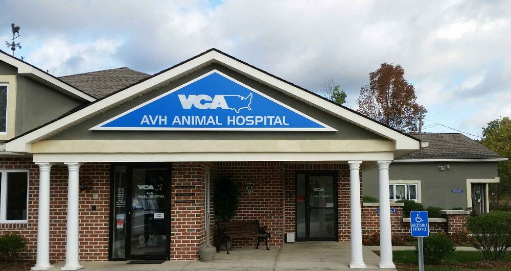 VCA AVH Animal Hospital: 1027 Blue Valley Dr, Pen Argyl, PA