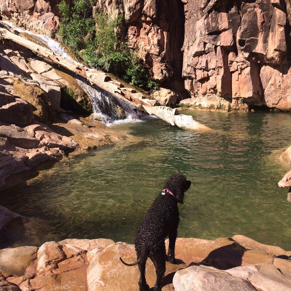 Photos For Water Wheel Campground Yelp
