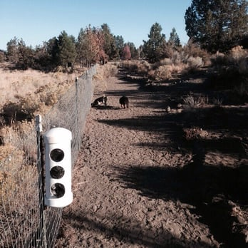 Photo Of Pine Nursery Park Bend Or United States Bag Stations Throughout