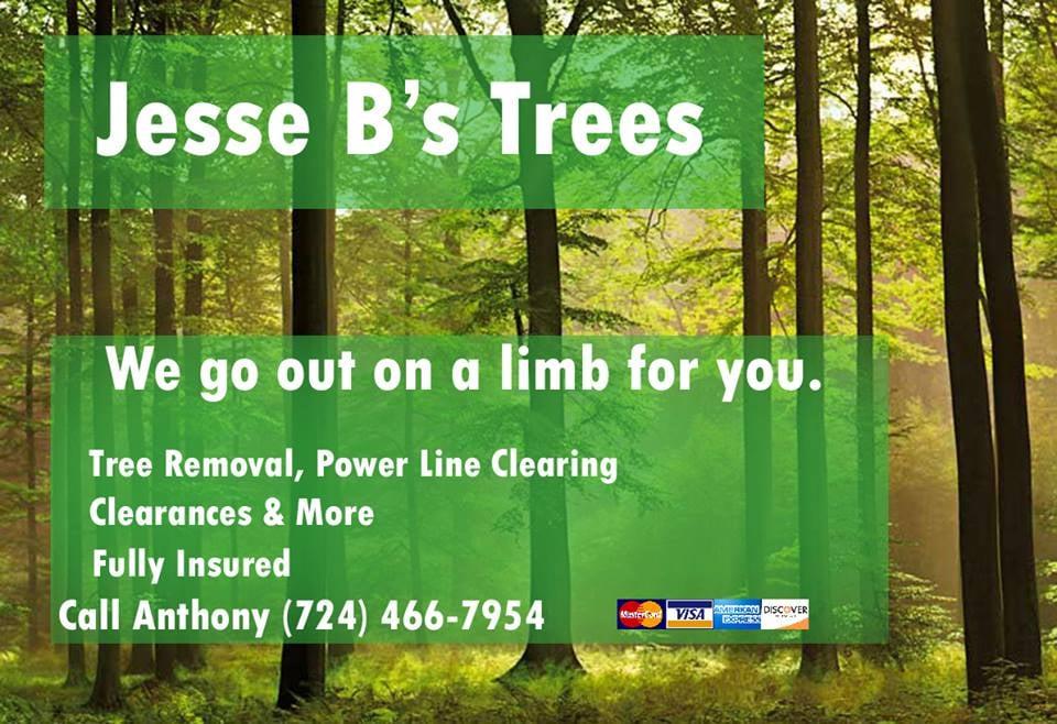 Jesse B's Trees: Uniontown, PA