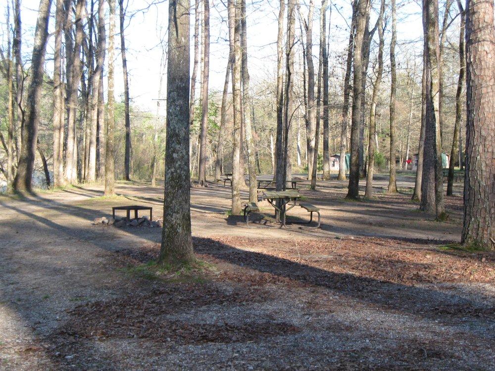 Two Spirits: 1167 Puckett Bend Rd, Mount Ida, AR