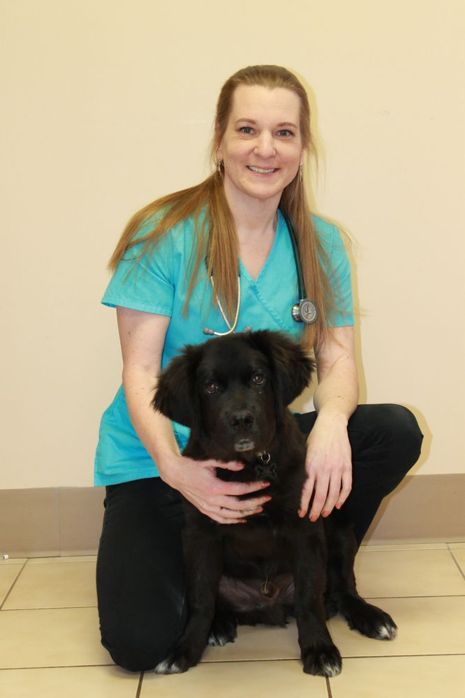 Lehigh Valley Animal Hospital: 7161 Beth Bath Pike, Bath, PA