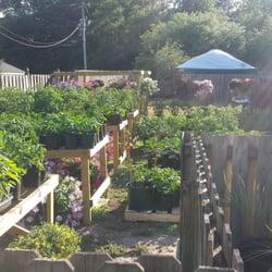 Foto De Green Seasons Garden Center   Wilmington, NC, Estados Unidos. We  Have