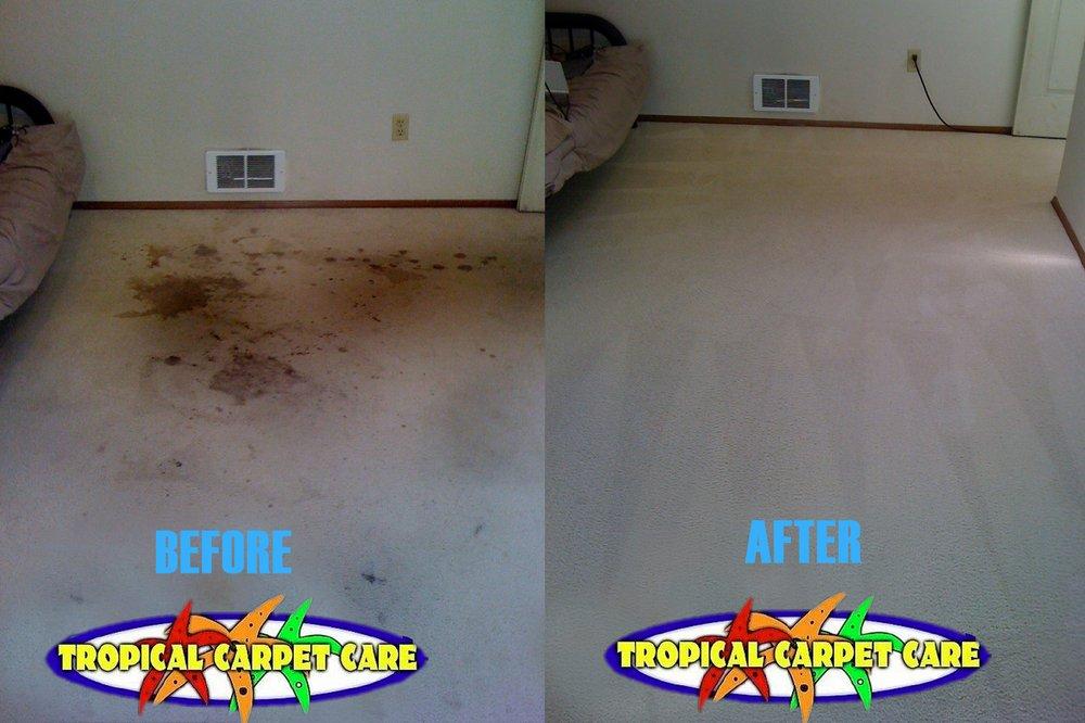 Tropical Carpet Care: 103 Pine Needle Cir, Cape Carteret, NC