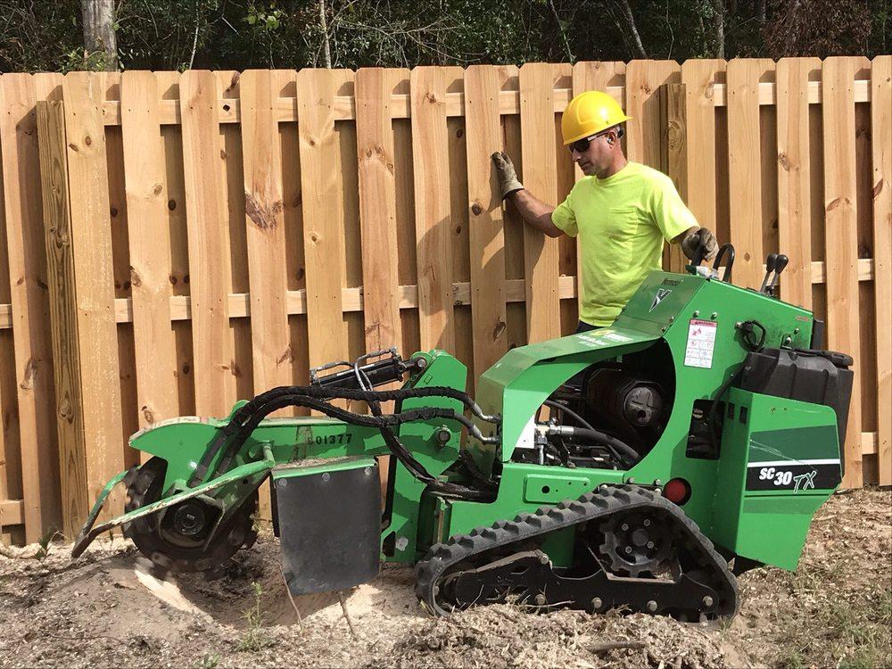 Live Oak Tree Service & Landscaping: Wilmington, NC