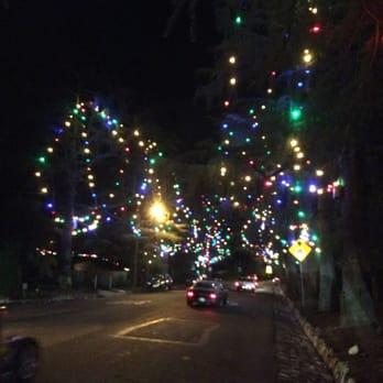 Christmas Tree Lane - 83 Photos & 72 Reviews - Christmas Trees ...