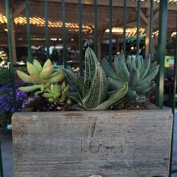 Photo Of Armstrong Garden Centers Tustin Ca United States