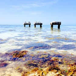 Photo Of Smathers Beach Key West Fl United States Remnants Dock