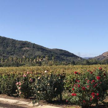 Photo of Kirigin Cellars - Gilroy CA United States. Lots of flowers and & Kirigin Cellars - 169 Photos u0026 165 Reviews - Wineries - 11550 ...