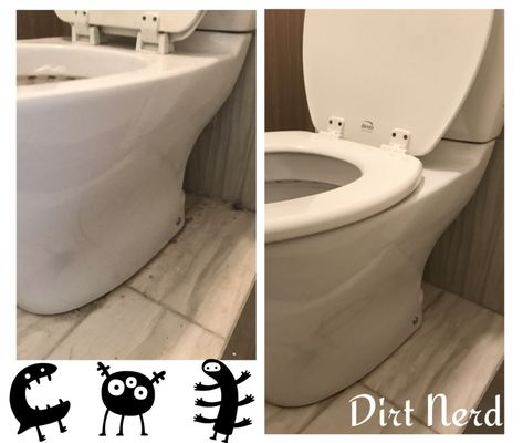 Superb Dirt Nerd New York Ny Cleaning Services Commercial Evergreenethics Interior Chair Design Evergreenethicsorg