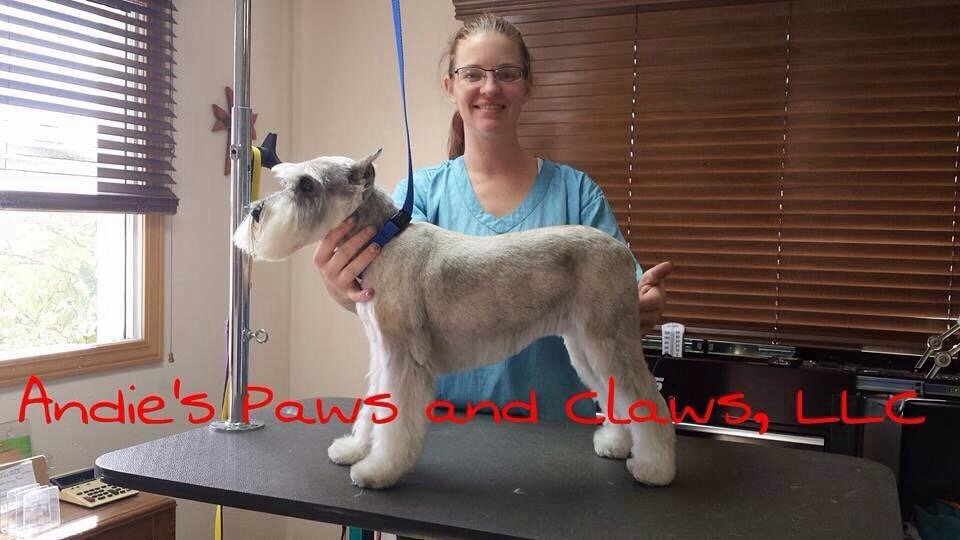 Andie's Paws & Claws: 101 S Broadway, Belgrade, MT