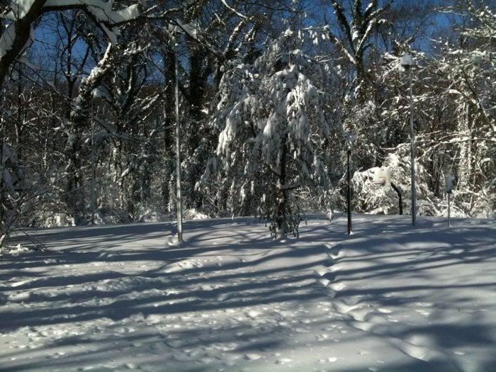 McLean Central Park