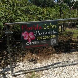Florida Colors Nursery Nurseries Gardening 23740 Sw 147th Ave Homestead Fl Phone Number Yelp