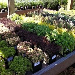 Garden World Flushing Ny Garden Ftempo