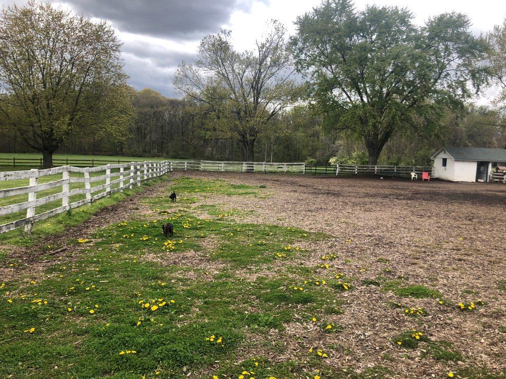 Concord Township Dog Park: 30 Bethel Rd, Garnet Valley, PA