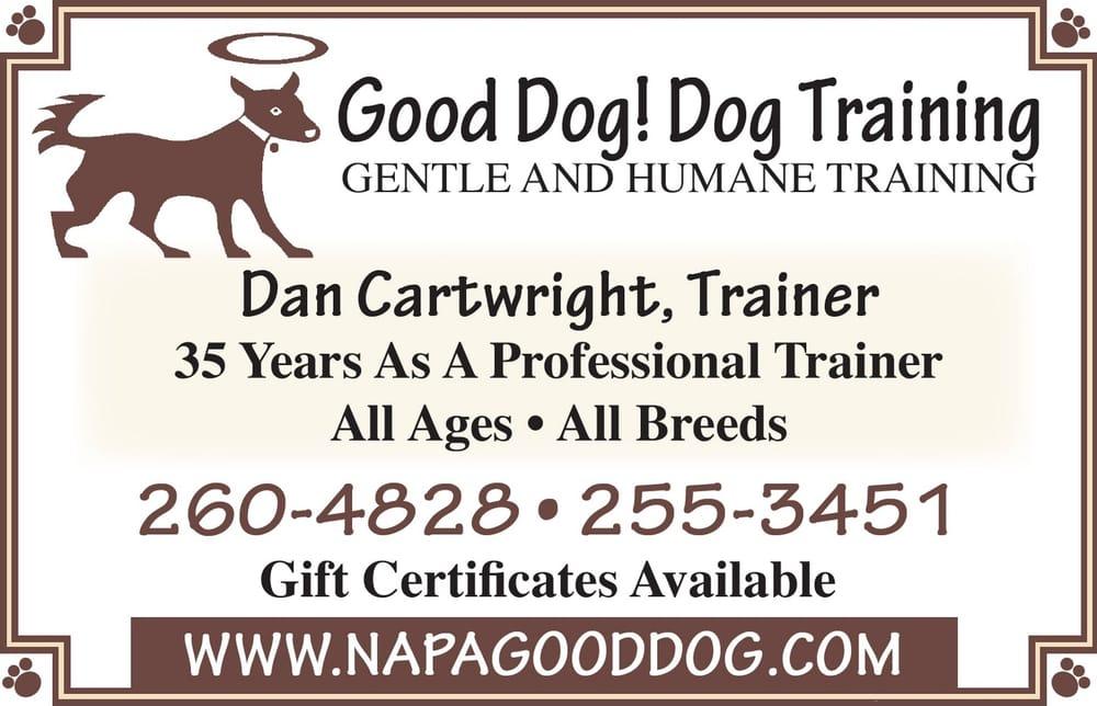Good Dog Dog Training: American Canyon, CA