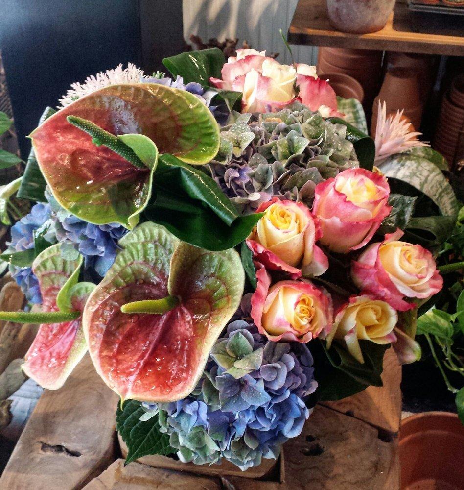 800 Flowers Near Me Lauren Goss