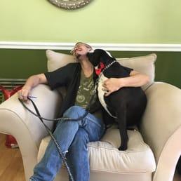 Luzy S Dapper Dog