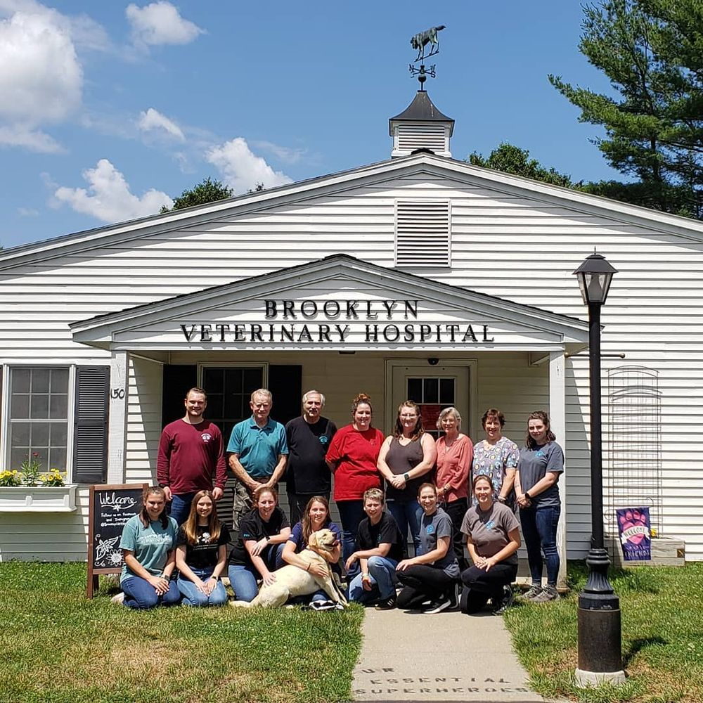 Brooklyn Veterinary Hospital: 150 Hartford Rd, Brooklyn, CT