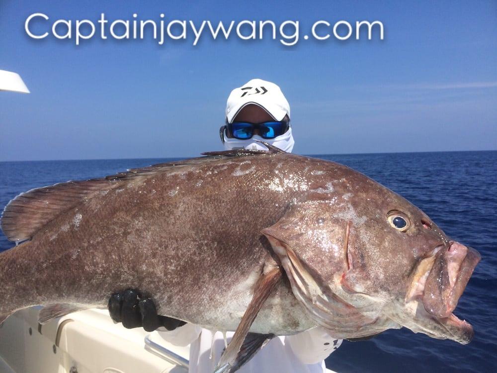 Go fishing - Yelp