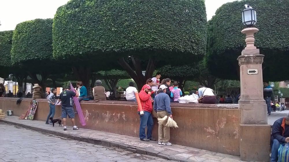 Jard n allende 22 fotos parques y jardines col for Jardin san miguel de allende