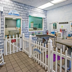 Dirty paws pet wash 43 photos 88 reviews pet groomers 6030 photo of dirty paws pet wash san diego ca united states solutioingenieria Choice Image