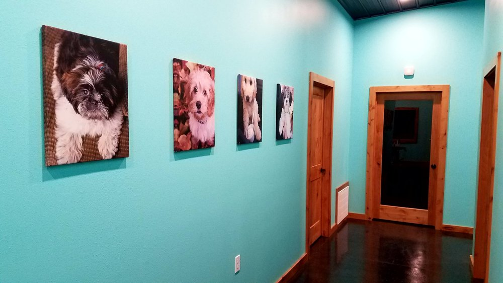 Pampered Pets Retreat & Spa: 112 N Main St, Kanawha, IA
