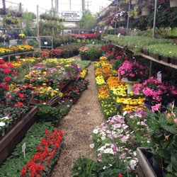 garden center nj. Photo Of Matt\u0027s Farm Market \u0026 Garden Center - Belmar, NJ, United States Nj R