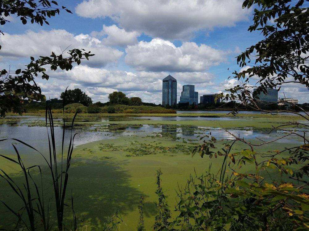 Normandale Lake Park
