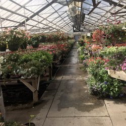 Jackson S Greenhouse Garden Center Jardinerie P Pini Re 1933 Nw Lower Silver Lake Rd