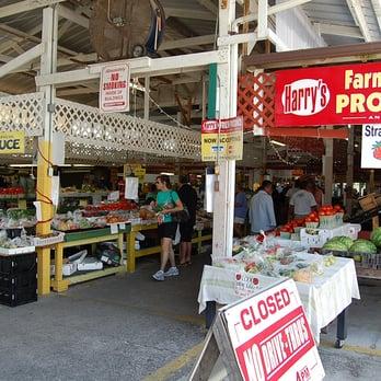 Oldsmar flea market 84 photos 66 reviews flea for Fish market tampa