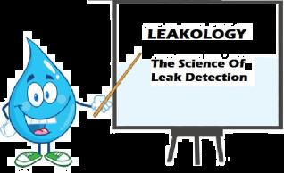 Certified Leak Detection: 6331 Autumn Chase Ln, Orlando, FL